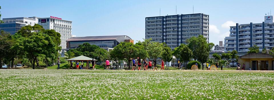 のびのび芝生広場