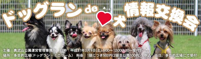 ドッグラン de 愛犬 情報交換会